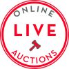Domain Live Auction